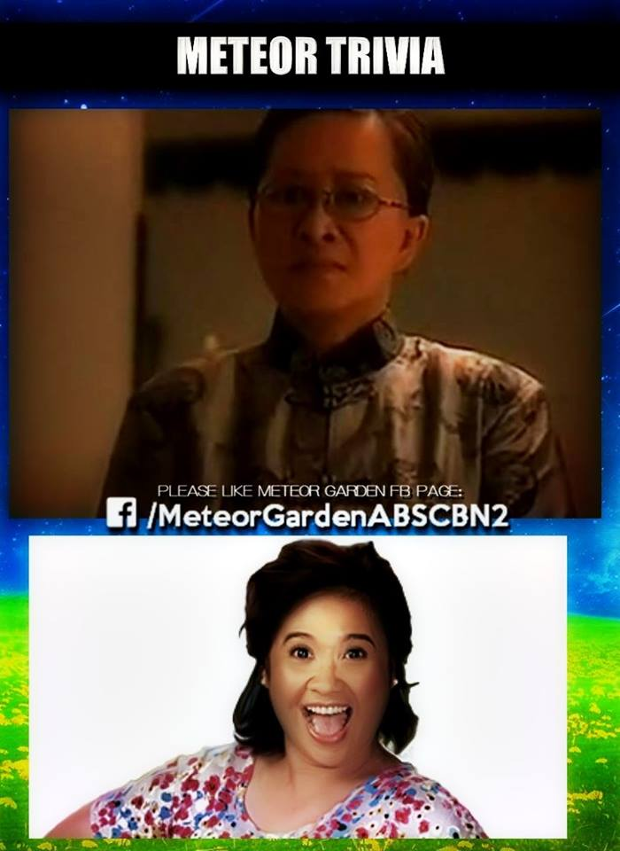 10 interesting trivia about the original Meteor Garden
