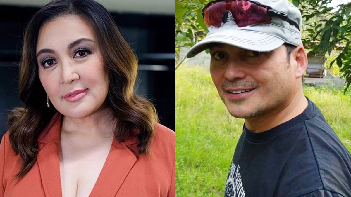 Sharon Cuneta no more feelings for ex-husband Gabby Concepcion