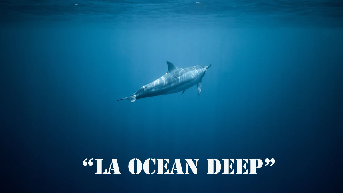 """Paano sabunin ang basher na nag-comment ng """"La Ocean Deep""""?"""
