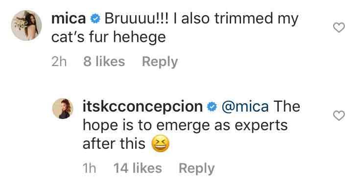 Mica Javier and KC Concepcion Instagram messages