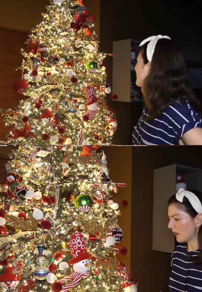 Celebrity Christmas Trees 2020