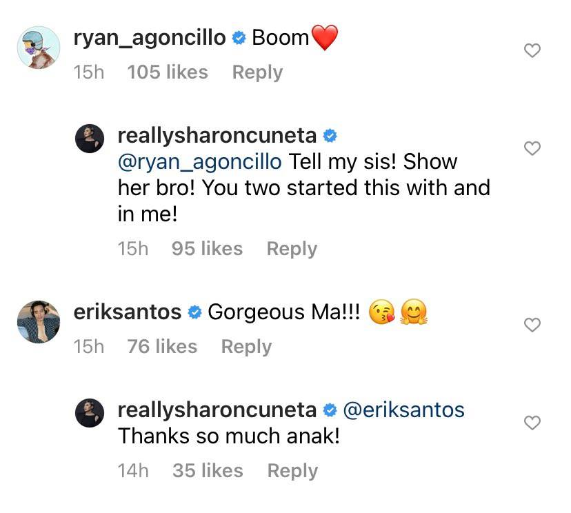 ryan agoncillo and erik santos comment on sharon cuneta swimsuit photo