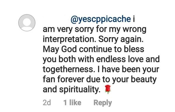 Netizen sorry Cherry Pie Picache