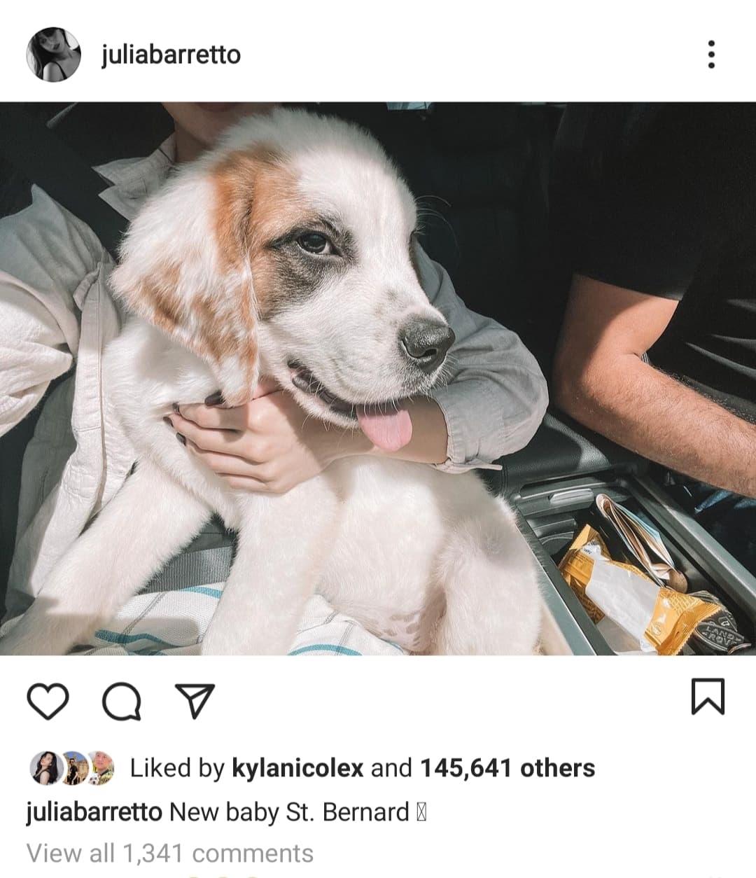 instagram post: julia barretto with puppy
