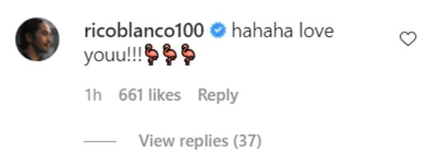 IG Comment: Rico Blanco replies I love you to Maris post