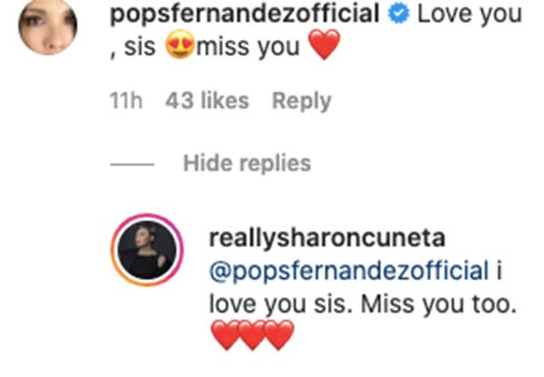 IG comment: Pop Fernandez reacts to Sharon Cuneta promotion of her show