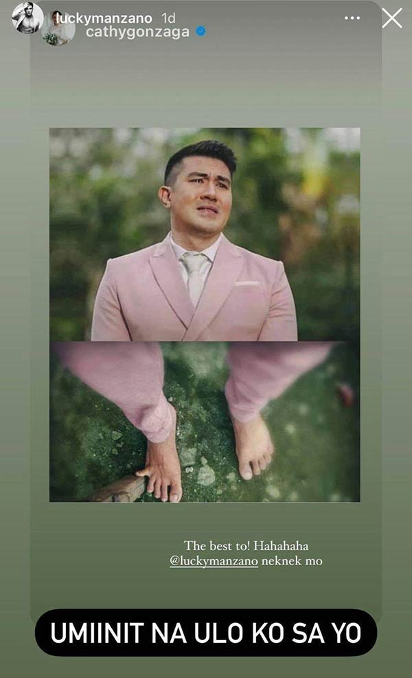 IG Story: Alex Gonzaga Luis Manzano wedding meme entry