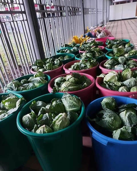 Free vegetables from Magsasaka Outlet