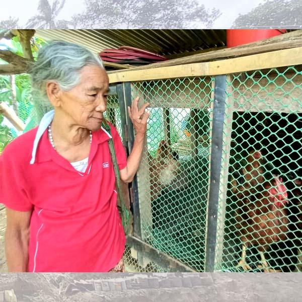 Apong Ana Saggob benepisyaryo Department of Agriculture SAAD program  source pagkain  income