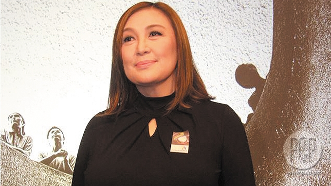 Sharon Cuneta bashed for ranting about