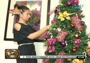 Glaiza de Castro shows Christmas tree in her home