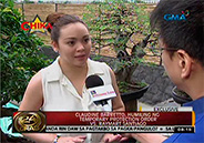 Claudine Barretto files Temporary Protection Order against husband Ray